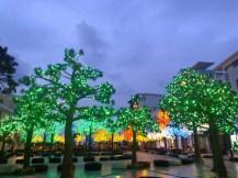 Trees of Light, I City